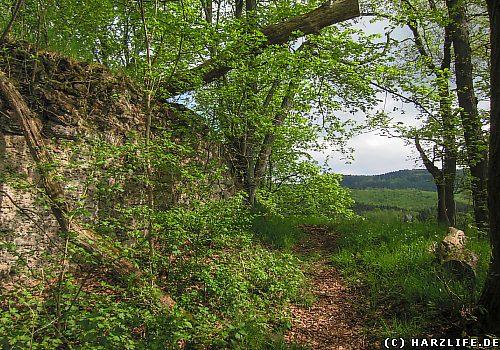 Die Burgruine Heinrichsburg bei Neustadt