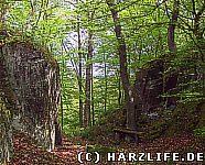 Hohlweg am Felsentor