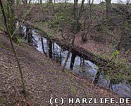 Der Westwall mit vorgelagertem Wassergraben