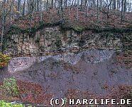 Der Geologische Aufschluß an der Langen Wand