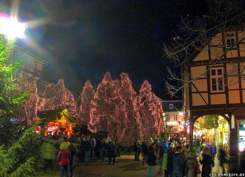 Der abendliche Weihnachtswald