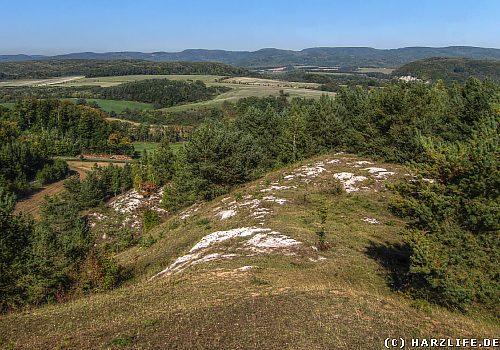 Das Naturschutzgebiet Sattelköpfe