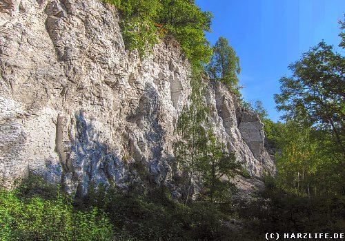 Ein ehemaliger Gipssteinbruch bei Rüdigsdorf