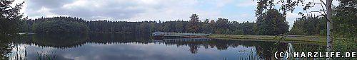 Der Neue Teich