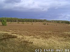 Hintergrundbild Heidelandschaft